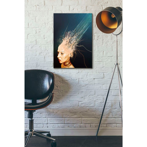 "Image of ""Emotionless"" by Mario Sanchez Nevado, Giclee Canvas Wall Art"