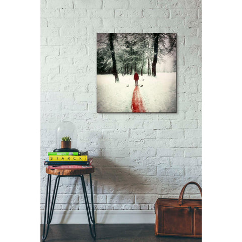"Image of ""Pure"" by Mario Sanchez Nevado, Giclee Canvas Wall Art"