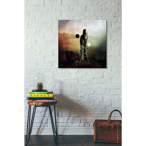 "Image of ""Postlife"" by Mario Sanchez Nevado, Giclee Canvas Wall Art"