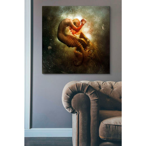"""Wanderer"" by Mario Sanchez Nevado, Giclee Canvas Wall Art"