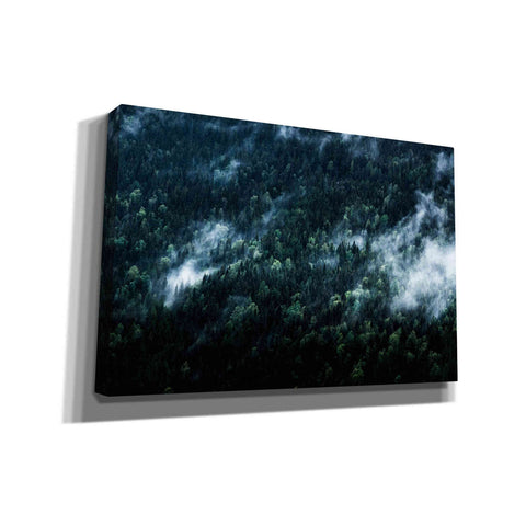 Image of 'Foggy Forest Mountain' by Nicklas Gustafsson Canvas Wall Art