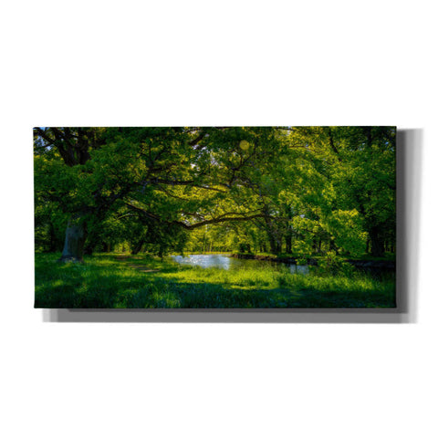 Image of 'Summer Morning In The Park' by Nicklas Gustafsson Canvas Wall Art