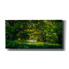 'Summer Morning In The Park' by Nicklas Gustafsson Canvas Wall Art