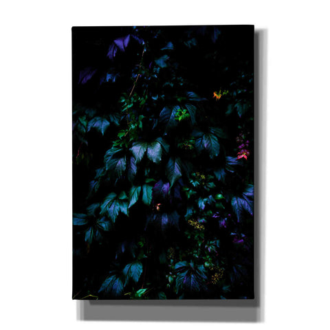 'Jungle' by Nicklas Gustafsson Canvas Wall Art