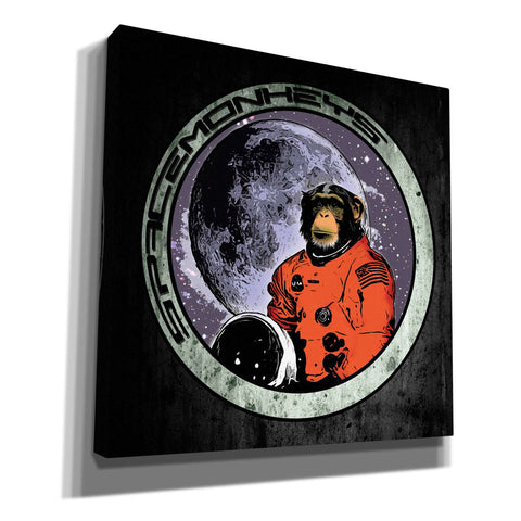 """Space Monkeys"" by Nicklas Gustafsson, Giclee Canvas Wall Art"
