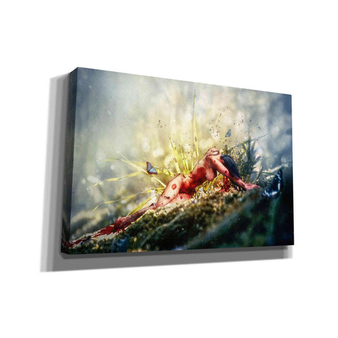 'A Matter of Decay' by Mario Sanchez Nevado, Canvas Wall Art,Size A Landscape