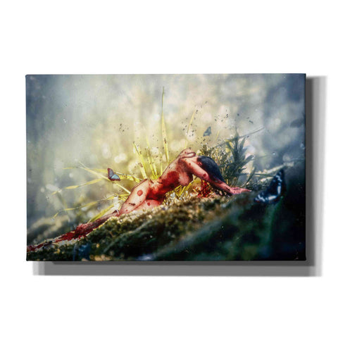 """A Matter of Decay"" by Mario Sanchez Nevado, Giclee Canvas Wall Art"