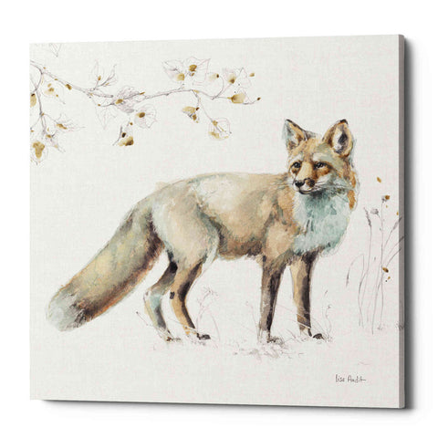 """Woodland Walk XI"" by Lisa Audit, Giclee Canvas Wall Art"
