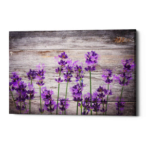 'Serene and Rustic' Giclee Canvas Wall Art