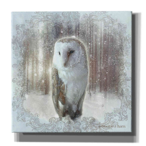 Image of 'Enchanted Winter Owl' by Bluebird Barn, Canvas Wall Art,Size 1 Sqaure