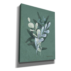 'Watercolor Greenery Series Dark II' by Bluebird Barn, Canvas Wall Art,Size B Portrait