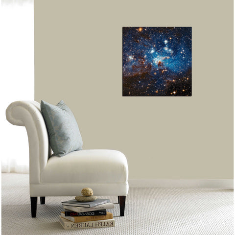 """LH 95 Star Cluster"" Hubble Space Telescope Giclee Canvas Wall Art"