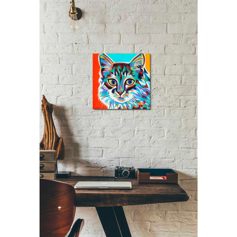 Image of 'Dramatic Cats II' by Carolee Vitaletti Giclee Canvas Wall Art
