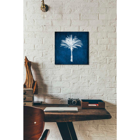 'Single Indigo And White Palm Tree' by Linda Woods, Canvas Wall Art,12 x 12
