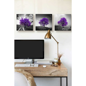 'Vibrant Tree Series: Amethyst Triptych (Set of 3)' Canvas Wall Art,36 x 12