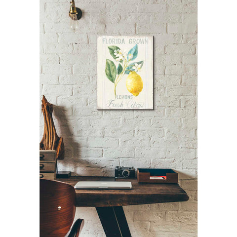Image of 'Floursack Lemon I' by Danhui Nai, Canvas Wall Art,12 x 16