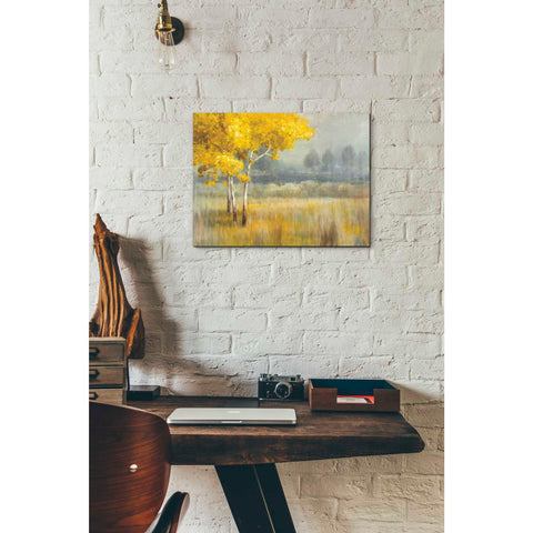 Image of 'Yellow Landscape' by Danhui Nai, Canvas Wall Art,12 x 16