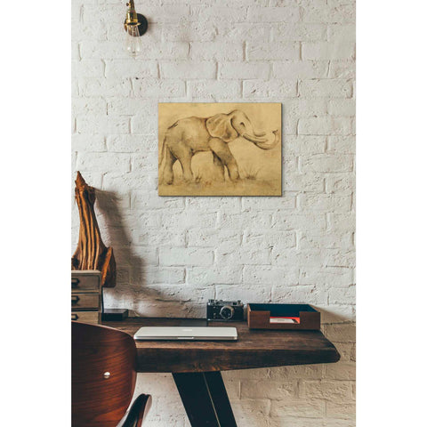 Image of 'Global Elephant Light Crop' by Cheri Blum, Giclee Canvas Wall Art