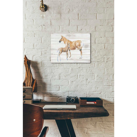Image of 'Horse and Colt on Wood' by Emily Adams, Giclee Canvas Wall Art