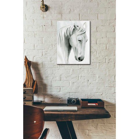 'Horse Whisper II' by Grace Popp Canvas Wall Art,12 x 16