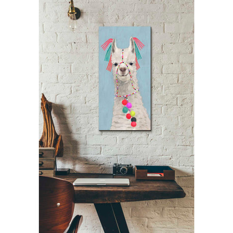 Image of 'Adorned Llama II' by Victoria Borges Giclee Canvas Wall Art