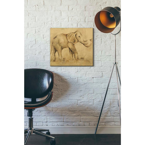 'Global Elephant Light Crop' by Cheri Blum, Giclee Canvas Wall Art