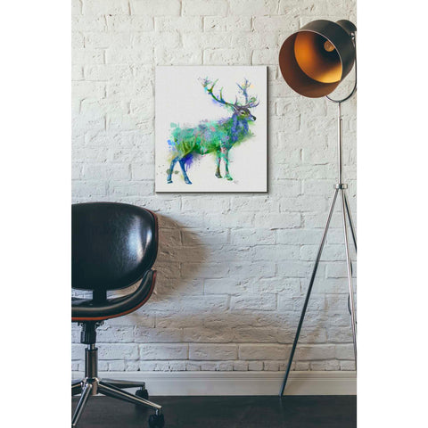 'Deer 1 Rainbow Splash Green Blue' by Fab Funky Canvas Wall Art,16 x 18