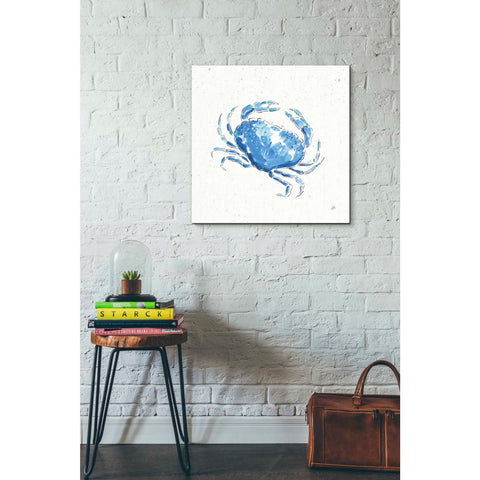 Image of 'Maritime X' by Daphne Brissonet, Giclee Canvas Wall Art