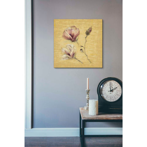 'Magnolia Blossom on Gold' by Cheri Blum, Giclee Canvas Wall Art