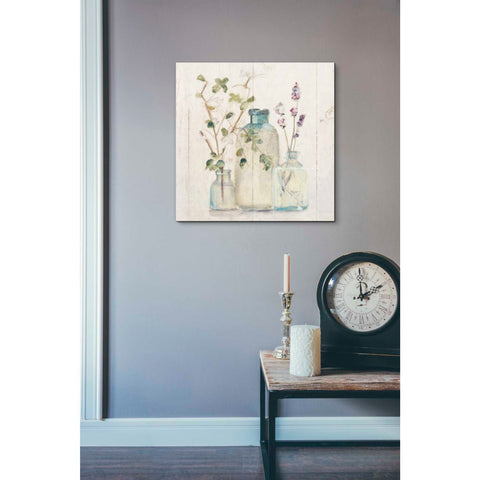 'Blossoms on Birch V' by Cheri Blum, Giclee Canvas Wall Art