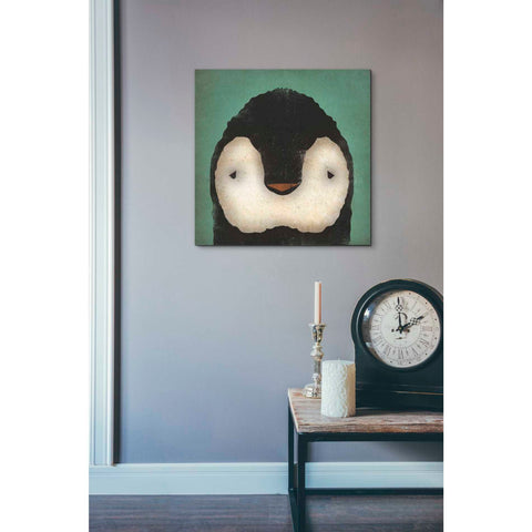 'Baby Penguin' by Ryan Fowler, Giclee Canvas Wall Art