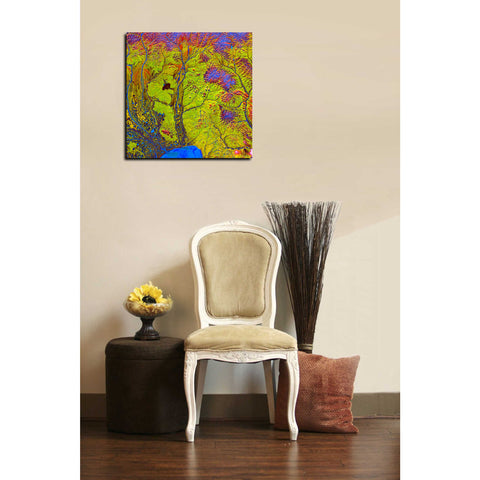 Image of 'Earth As Art: Siberian Ribbons' Giclee Acrylic Wall Art