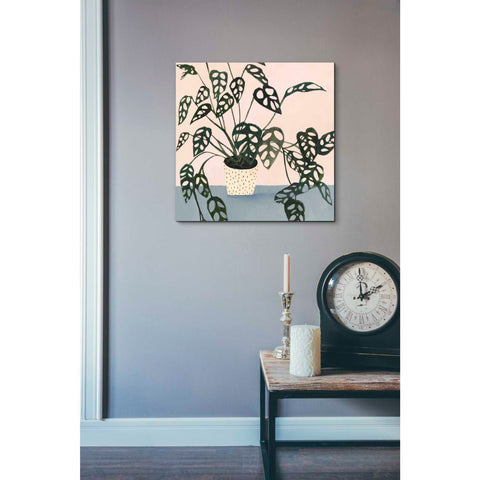 Image of 'Houseplant I' by Victoria Borges Giclee Canvas Wall Art