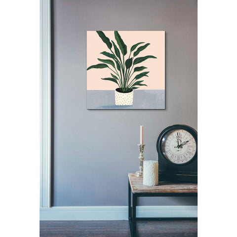 'Houseplant IV' by Victoria Borges Giclee Canvas Wall Art