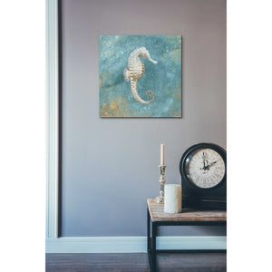 'Treasures From The Sea I' by Danhui Nai, Canvas Wall Art,18 x 18
