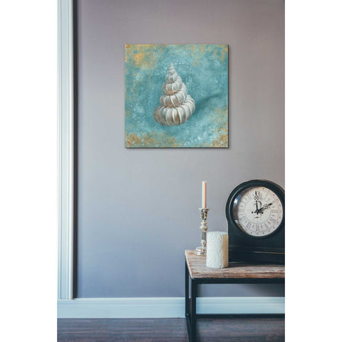 "Image of ""Treasures From The Sea II"" by Danhui Nai, Giclee Canvas Wall Art"