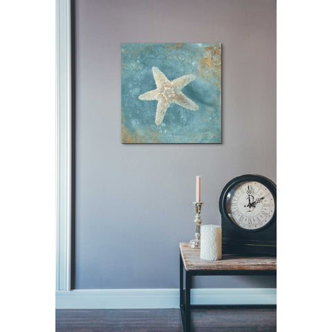 "Image of ""Treasures From The Sea IV"" by Danhui Nai, Giclee Canvas Wall Art"