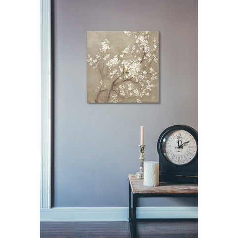 Image of 'White Cherry Blossom I Neutral' by Danhui Nai, Canvas Wall Art,18 x 18