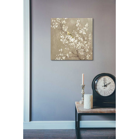 """White Cherry Blossom II Neutral"" by Danhui Nai, Giclee Canvas Wall Art"
