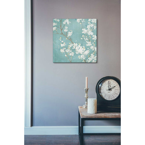 Image of 'White Cherry Blossom II on Blue' by Danhui Nai, Canvas Wall Art,18 x 18