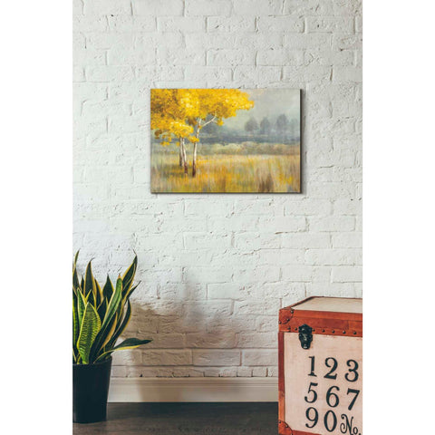 Image of 'Yellow Landscape' by Danhui Nai, Canvas Wall Art,18 x 26