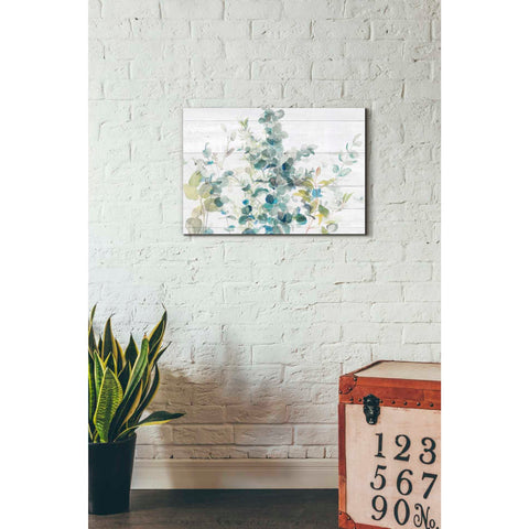 Image of 'Eucalyptus I on Shiplap Crop' by Danhui Nai, Canvas Wall Art,18 x 26