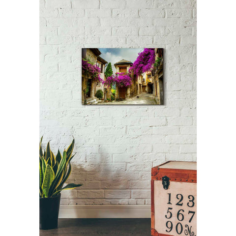 'Bougainvillea' Canvas Wall Art,18 x 26