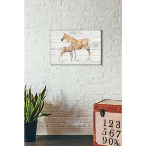 'Horse and Colt on Wood' by Emily Adams, Giclee Canvas Wall Art