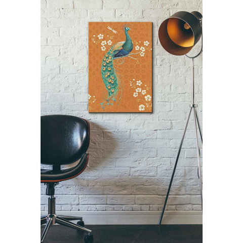 Image of 'Ornate Peacock IX Spice' by Daphne Brissonet, Giclee Canvas Wall Art