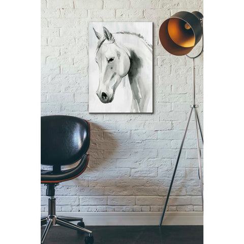 'Horse Whisper I' by Grace Popp Canvas Wall Art,18 x 26