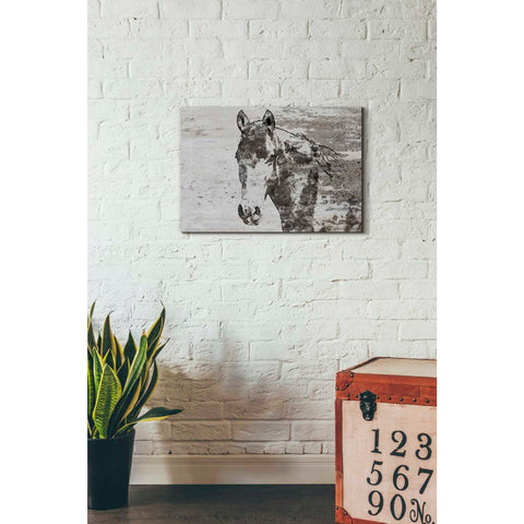 Image of 'Portrait of a Horse' by Irena Orlov, Canvas Wall Art,26 x 18