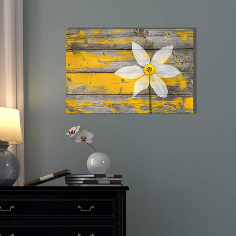 Image of 'Wood Series: A Rustic Paradise' Canvas Wall Art,18 x 26