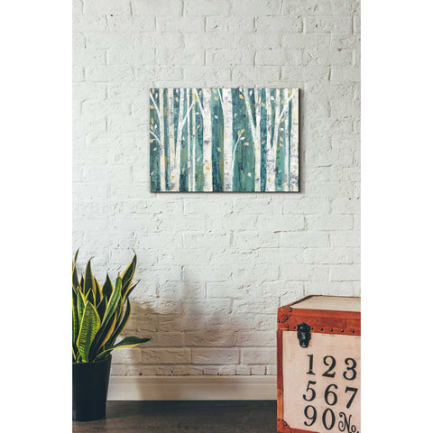 """Birches in Spring"" by Julia Purinton, Giclee Canvas Wall Art"