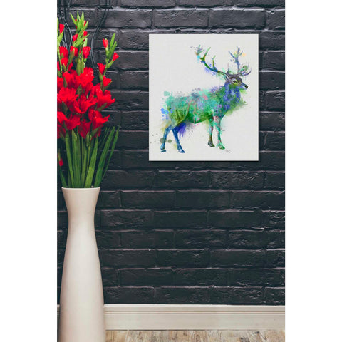'Deer 1 Rainbow Splash Green Blue' by Fab Funky Canvas Wall Art,20 x 24